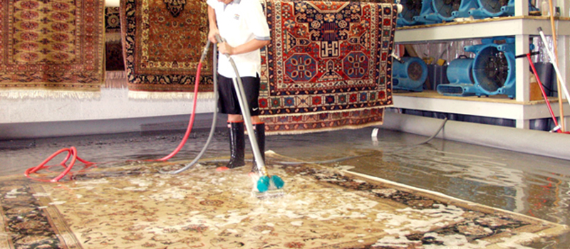 professional cleaning rug care