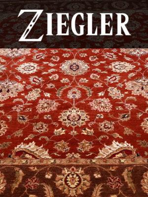 Ziegler Collection